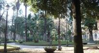 Abbattimento alberi in villa comunale, si comincia martedì 20 febbraio