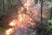 Incendio montagna di Angri, elicotteri in azione