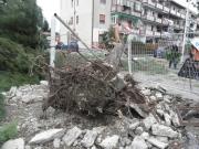 Si schiantano due pini nel Rione Alfano, tragedia sfiorata