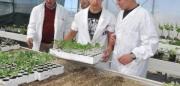 Angri, protocollo d'intesa tra il Comune e L'istituto Professionale per l'Agricoltura